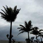 2017年SFC修行石垣島旅行1回目(1/14-1/15)1日目-ドン曇りの石垣島へ-