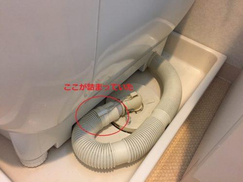 機 掃除 洗濯 排水 ホース